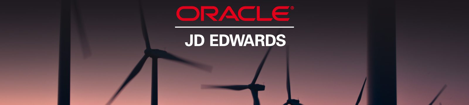 Oracle JD Edwards ERP