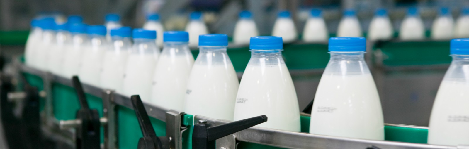 ERP for Dairy Industry