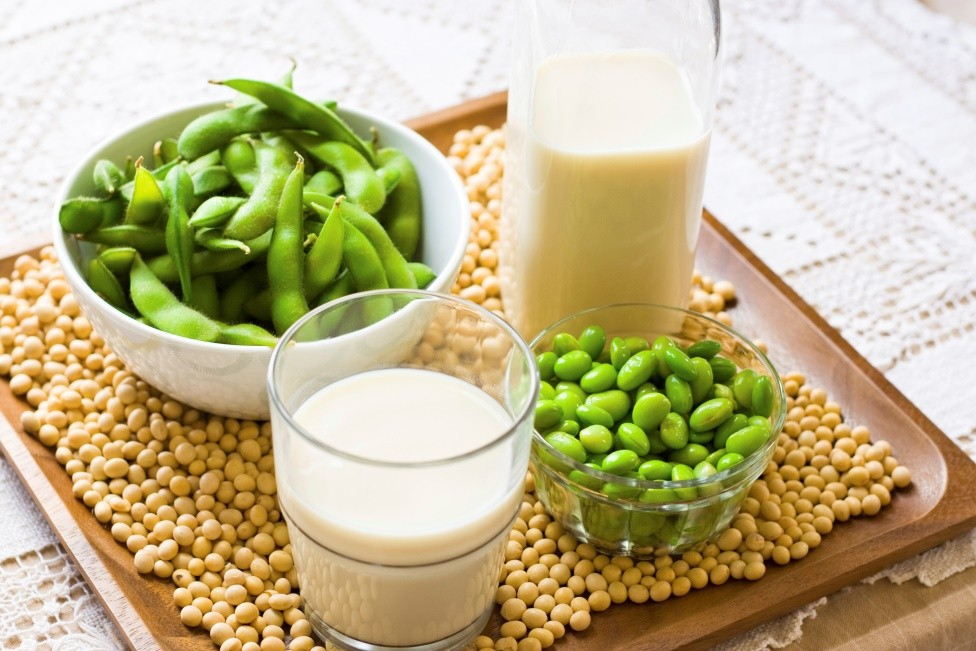 Different products out of soy